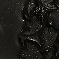 Black Forest Black embossing powder